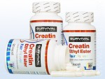 Creatin Ethyl Ester Fair Power (90 cps)