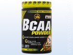 BCAA Powder (500 g)